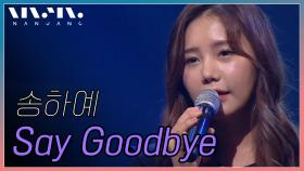 송하예 - Say Goodbye @NanJang